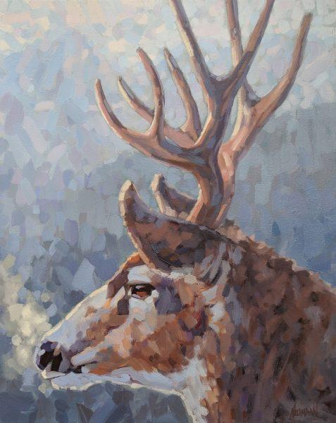 Neumann_In_His_Element_24_30_Stag_wildlife_art_web